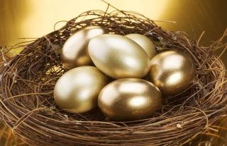 Shutterstock_75242476.nest.egg.cropped-5bfc331146e0fb0083c1d8e3